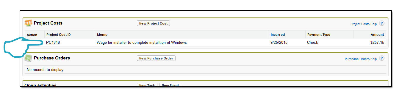 Project Cost record in related list